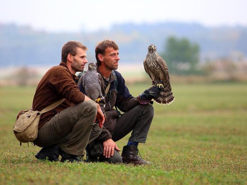 Falconry_Czech_Men_05