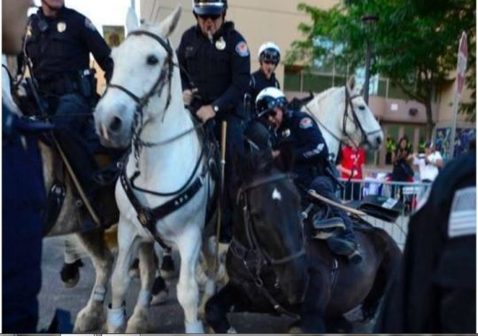 Anti-Trump protestors attack police and their horses (Twitter)
