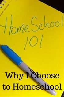 why i choose to homeschool pin