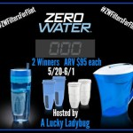Zero Water Giveaway Ends June 1 *ENDED*