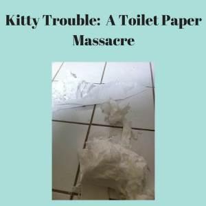 Kitty Trouble- A Toilet Paper Massacre