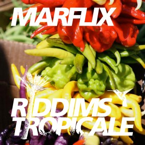 RIDDIMS TROPICALE 24
