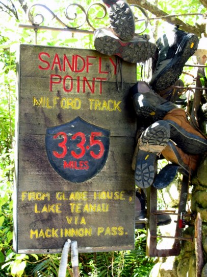 The famous sandfly point on Milford Track