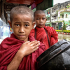 Burmese child monks