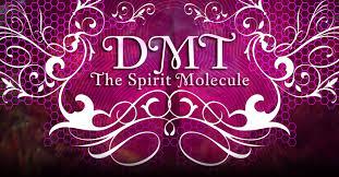 DMT - The Spirit Molecule - Documentary