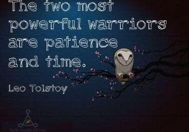 The two most powerful warriors are patience and time. ~ Leo Tolstoy