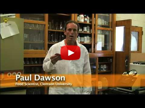 paul-dawson-5-seconds-rule