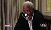 morgan-freeman-explains-all-the-truth-about-bees-video