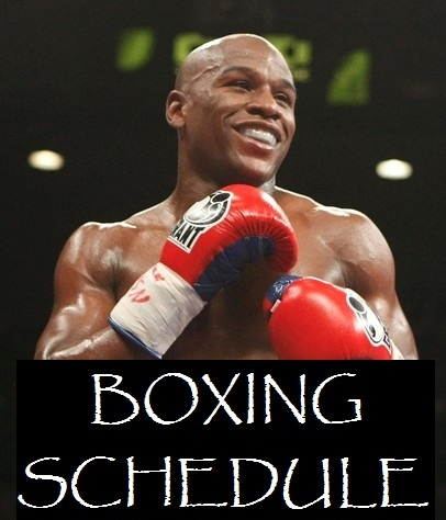 boxing schedule 2013 boxing news boxing ufc and mma news fight results