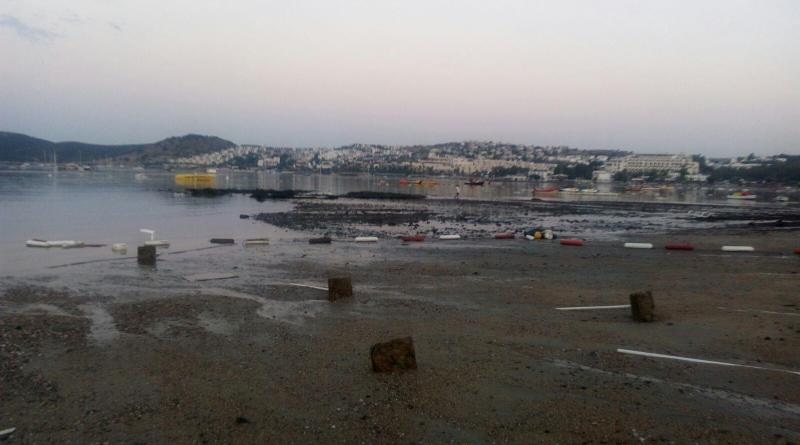 Report-Field-Survey-of-tsunami-effects-at-S-of-Bodrum-Peninsula