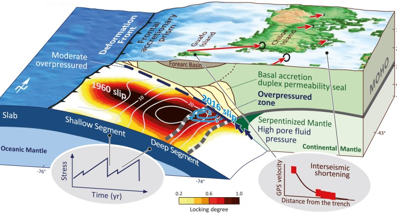 The stronger shallower segment strains and stresses the deeper segment of the seismogenic zone. The deeper segment is weaker and fails at lower stress build-up in 2016-class earthquakes. Higher shear strength along the shallow segment allows longer periods (>110yr) of stress build-up, the release of which may result in great 1960-class earthquakes that can also extend into the deeper segment. Interseismic GPS velocities indicate high crustal shortening above the deeper section of the seismogenic zone (right inset). Pore fluid pressure gradients along the plate interface are related to the geological configuration of the margin, and exert a mechanical control on the strength segmentation and timing of stress release in the seismogenic zone (left inset). 'Chilean megathrust earthquake recurrence linked to frictional contrast at depth', Nature Science, DOI 10.1038/s41561-018-0089-5 (Credit: M. Moreno; Nature Geoscience / SPRINGER NATURE)
