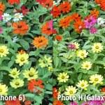 GalaxyS6iPone6-10