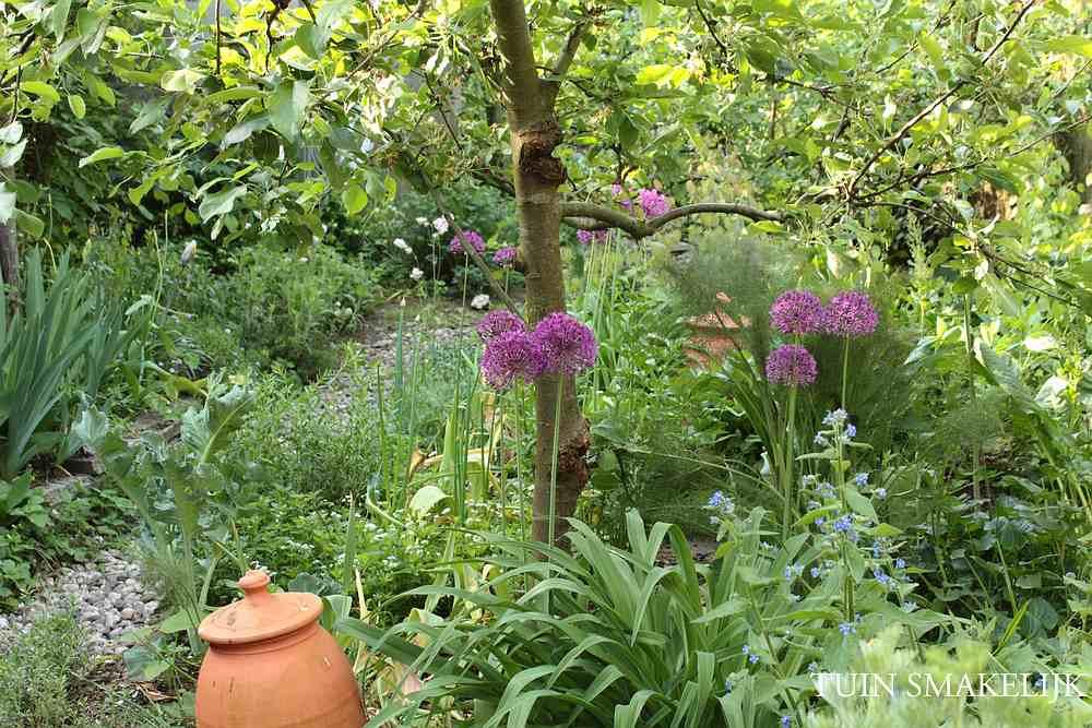 Eetbare bostuin tuin smakelijk for Tuinontwerp eetbare tuin