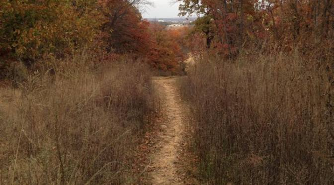 Blogs: Trail users weigh in on what development would mean.