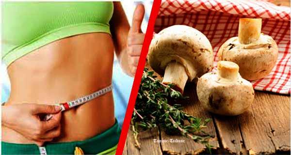 Riche en vitamines et en protéines, le champignon est un excellent aliment minceur rassasiant