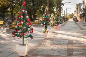Natal no Caminho das Estrelas 2020   Foto: Samuel Sattler