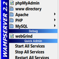 WAMP : PHP My Admin - Getting Started With MySql - 1