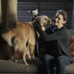 Castle An Embarrassment of Bitches Season 4 Episode 13 (9)