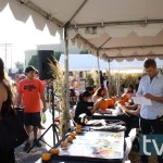 fox animation domination halloween pumpkin patch tvequals 20