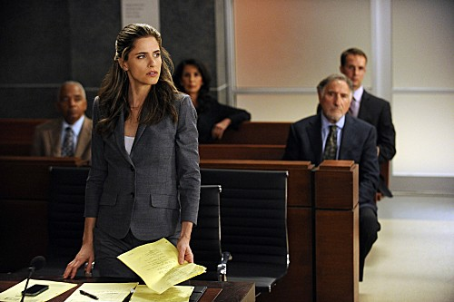 The Good Wife Season 4 Episode 8 Here Comes the Judge (1)