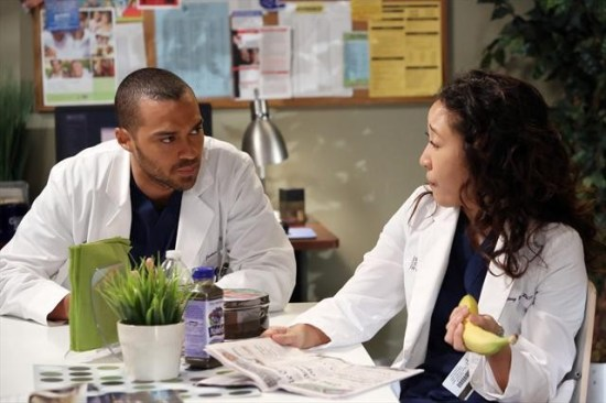 Grey's Anatomy Season 9 Episode 11 The End is the Beginning is the End (5)
