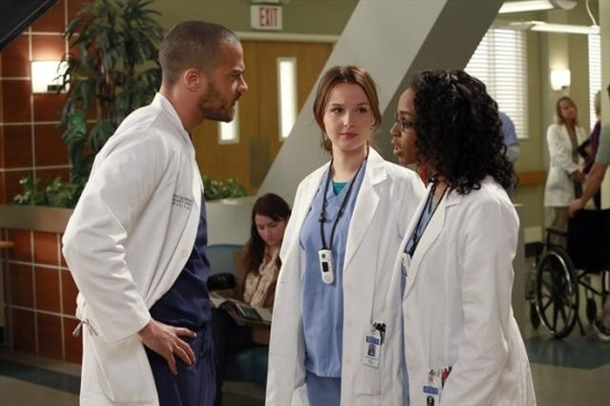 Grey's Anatomy Season 9 Episode 14 The Face of Change (2)