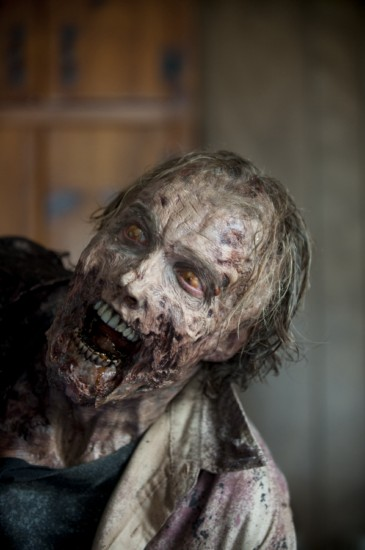 The Walking Dead Season 3 Episode 9 Seed (8)