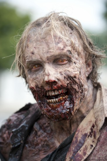 The Walking Dead Season 3 Episode 9 Seed (9)