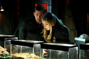 CSI Under My Skin Season 15 Episode 17 02