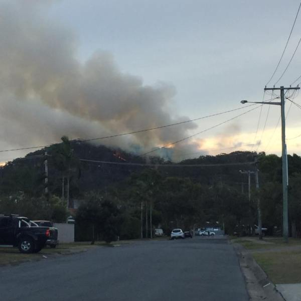 From Oleander facing Cabarita Road Photo credit: Tamy Blanchfield.