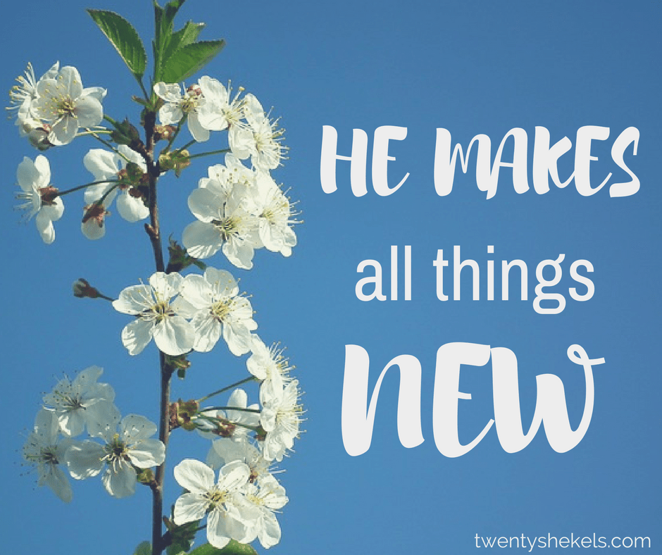 HE MAKES all things new. png