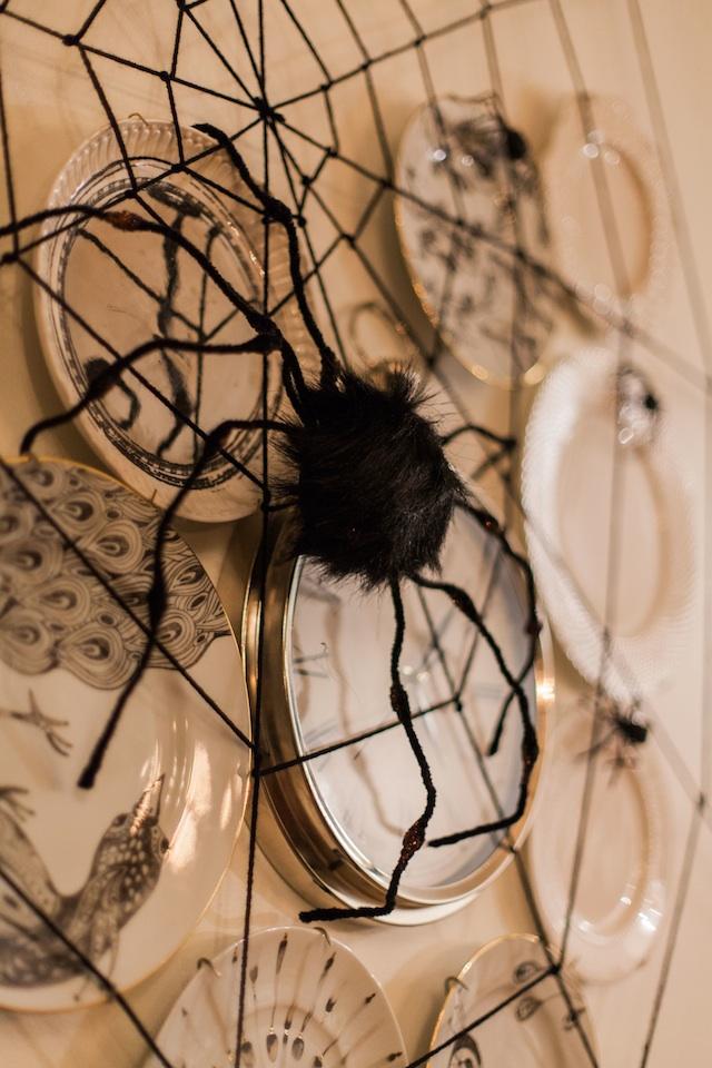 close spider