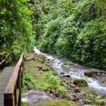 Rainmaker Conservation Project: Unspoiled Nature Near Manuel Antonio