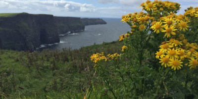 The Cliffs of Moher on the west coast of Ireland.