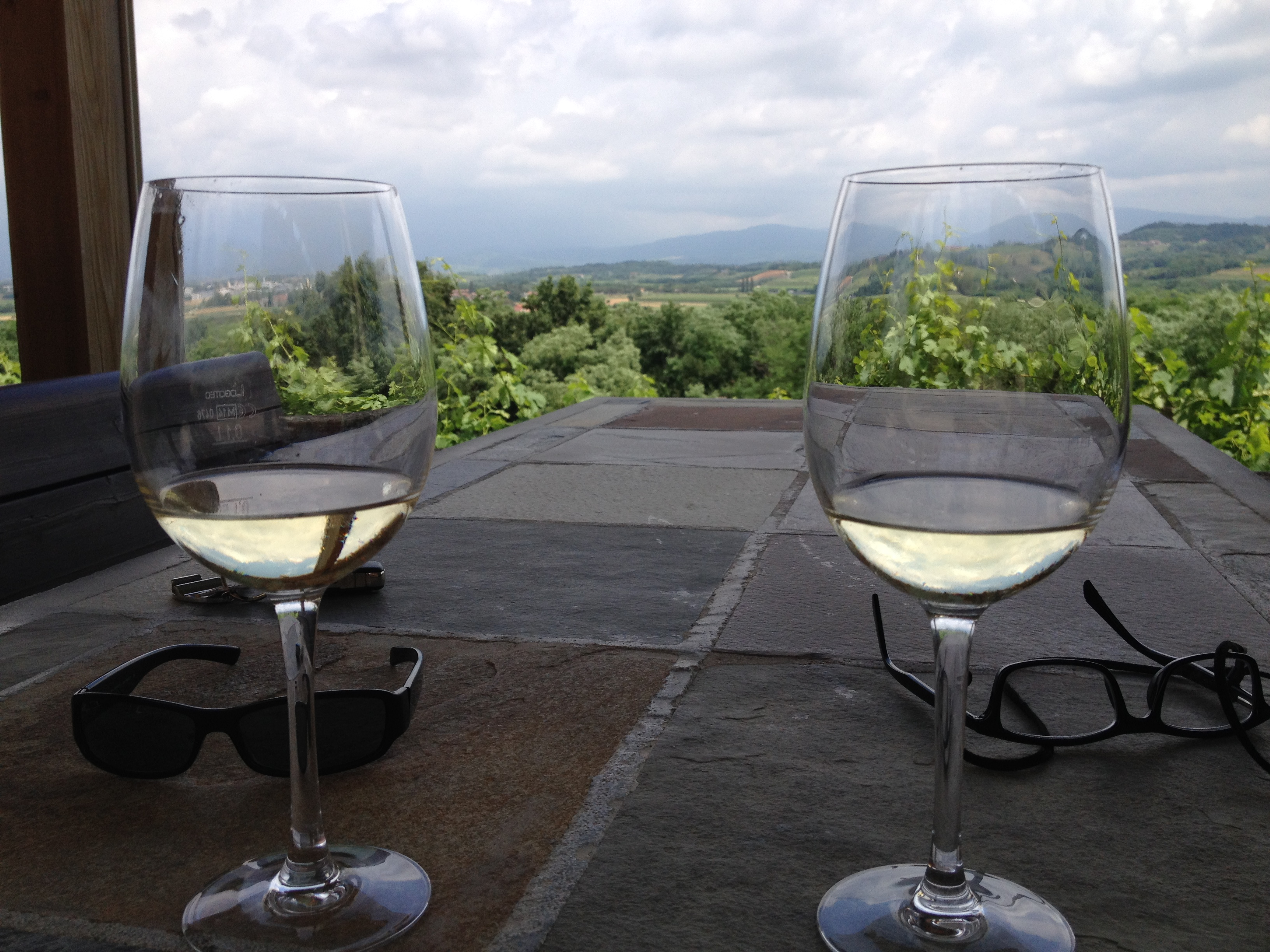 Wine Manzano View