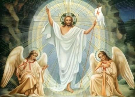 شباك الرب – كلمةالحياة