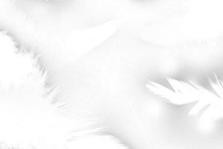 Feather Brush