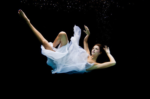 Underwater Photography by Michael Howard