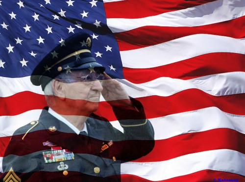 Veterans-Day-Pictures-28