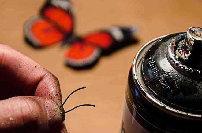 butterfly-effect-Andreas-Preis-bts11