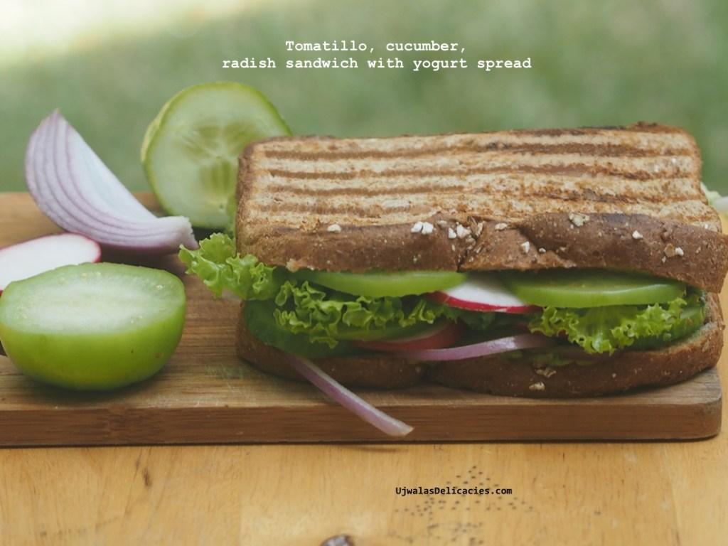 Radish Tomatillo Sandwich