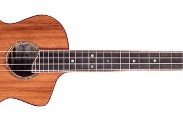 lichty long neck tenor ukulele magazine