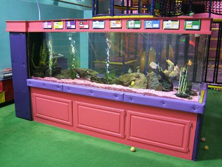 Craigslist Fish Tanks for Sale http://www.ultimate aquarium services