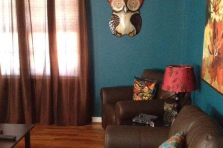 amazing owl wall decor for living room