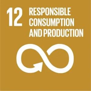 SDGs Icon Goal 12