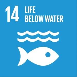 SDGs Icon Goal 14