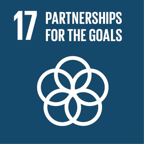 UN SDG Goal 17: Revitalize the global partnership for sustainable development