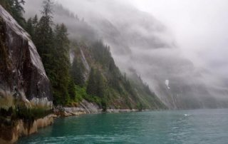 Photo: Boreal forests line a misty fjord in southeast Alaska.