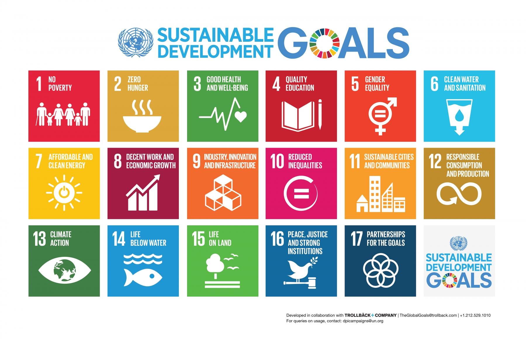 E SDG Poster Tabloid