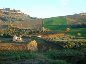 Oktober bei Montalto delle Marche